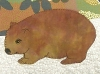 Wombat cushion cover.