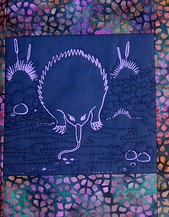 Echidna journal cover.