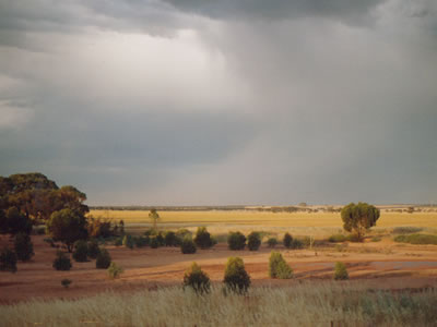 landscape in outback South Australia